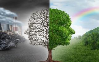 «Окружающая среда и здоровье»