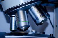 Российская академия наук объявляет конкурс на соискание медалей РАН с премиями за лучшие научные работы